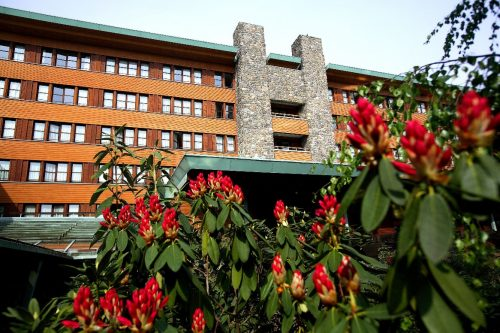 Magisch Vuurwerk Festival Disney's Sequoia Lodge *** busreis